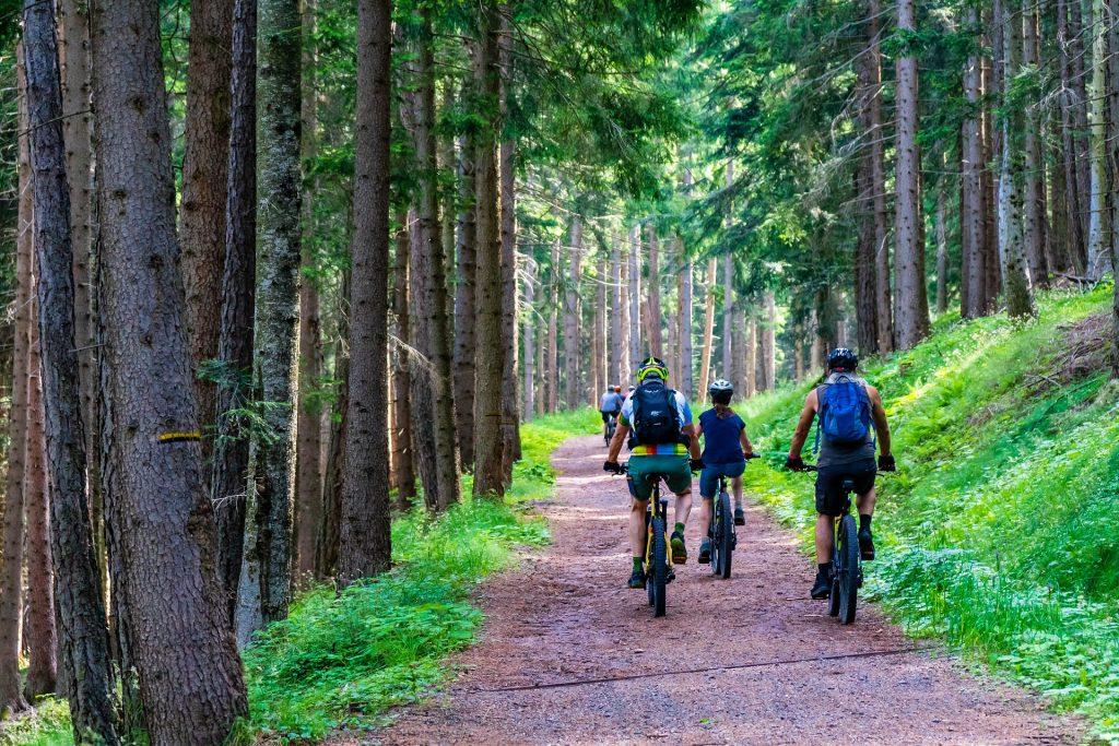 mountainbike routes nederland