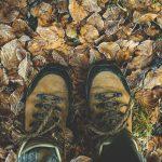 verschil tussen hiken en wandelen