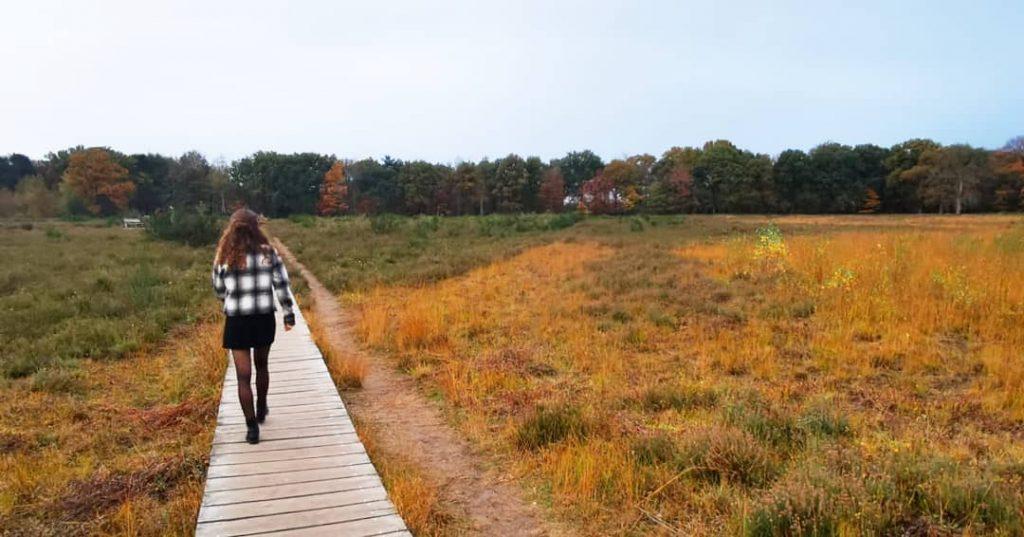 Mooiste plekken om te wandelen in Nederland